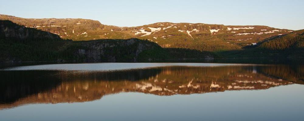 Nærøy Fjellstyre